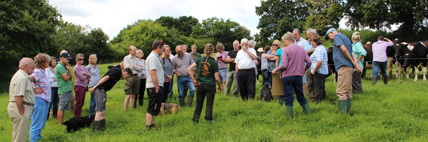 [28.08.19] Bronze Otter Award for Farming Conservation Presented to Chubbs Farm, Devon