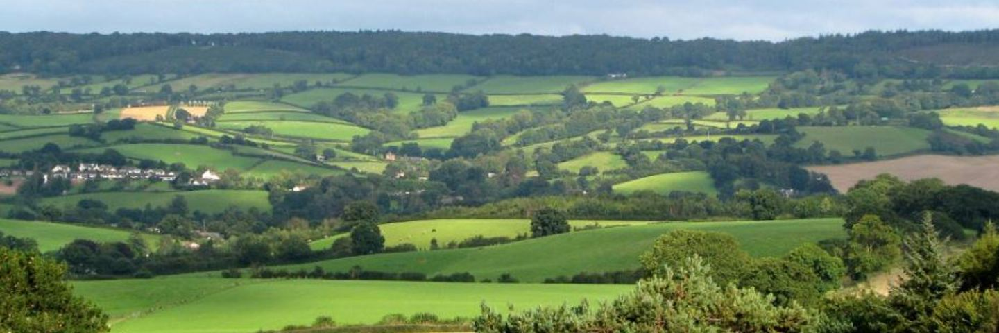 About the Somerset Catchment Partnership