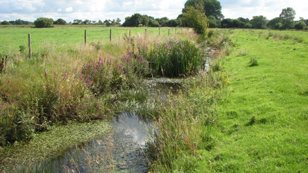 Wessex Diffuse Water Pollution Programme