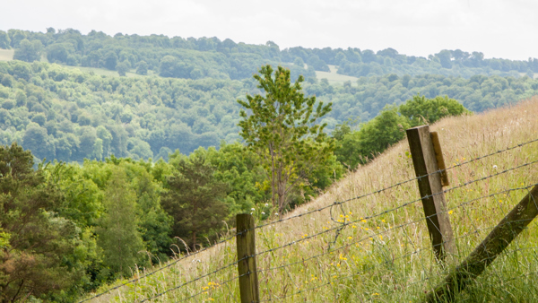[08.04.20] NFU Press Release: Enjoy the countryside –but please be responsible and keep your distance